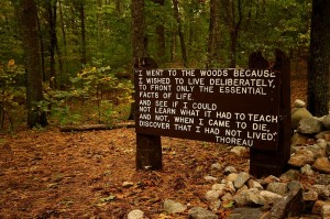 A sign near the site of Thoreau's cabin...