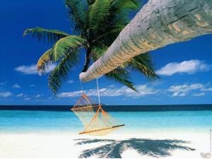 A beach, a hammock, a blue sky . . . paradise?
