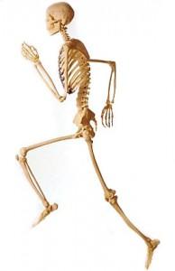Running Bones