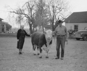 "My grandparents at their Merced, California farm . . . with a ""little"" bull."