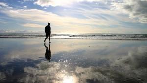 Respite...along a beach