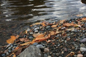 . . . and chose five smooth stones from the streambed . . .