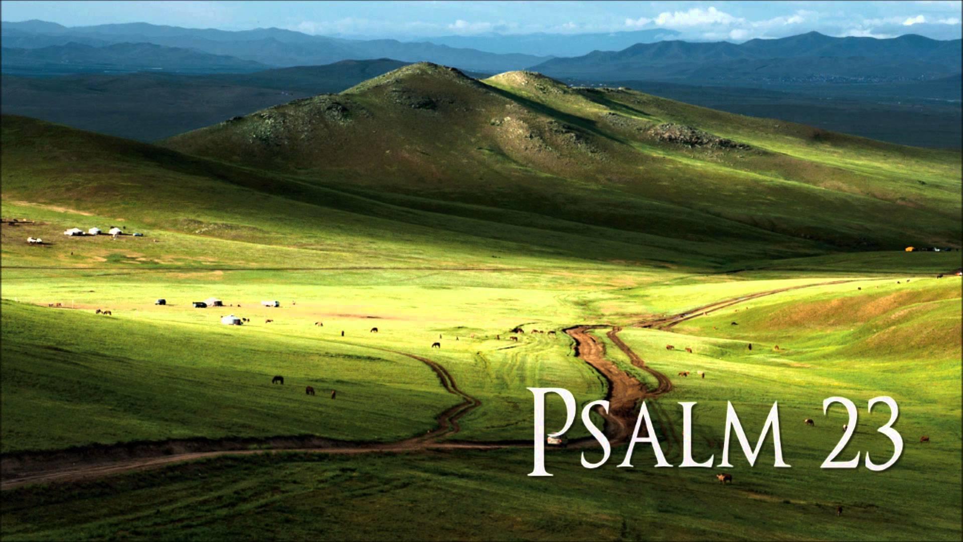 essays on psalms 23 Similar Essays
